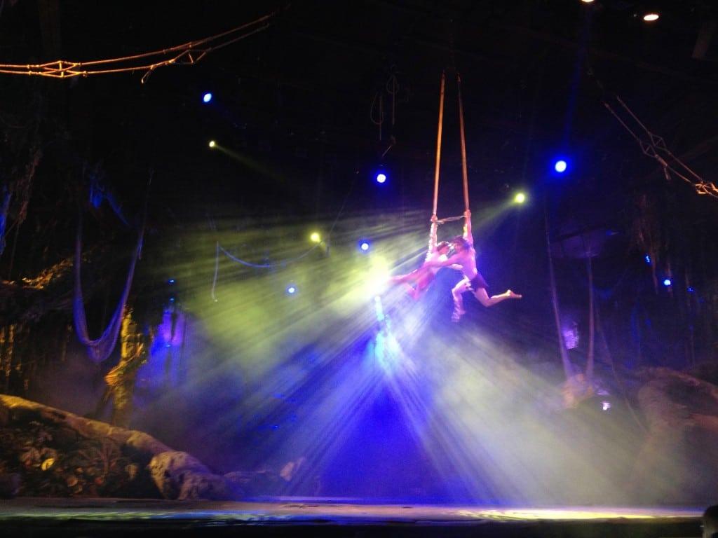 Impressionnant et poétique ce duo - Tarzan La Rencontre - Représentation Passeports Annuels Dream