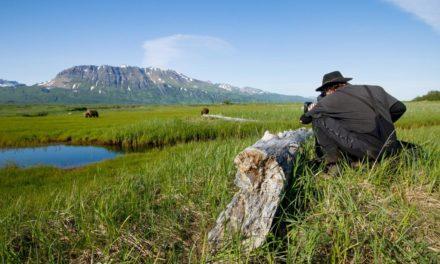 Le tournage de GRIZZLY, le cinquième long métrage Disneynature, a commencé en mai 2012 en Alaska et s'achèvera en septembre 2013