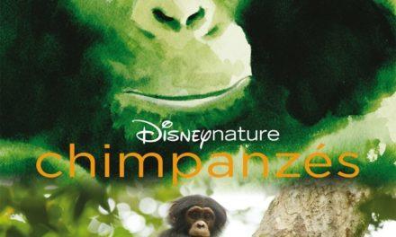 Chimpanzés de Disneynature, gagnez des goodies du film et des places de cinéma, à l'occasion de sa sortie en salles le 20 février 2013.