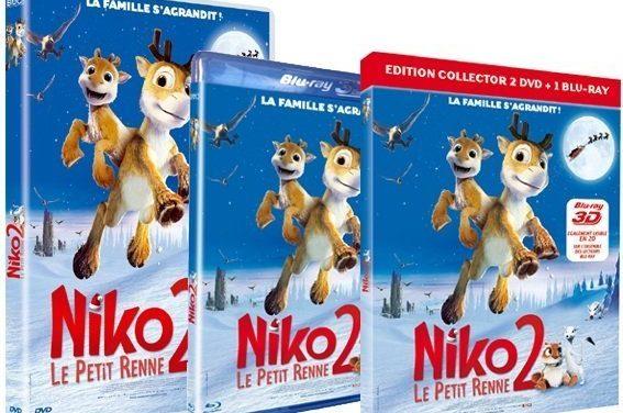 Niko le Petit Renne 2 en DVD et Blu-Ray 3D le 28 Mars 2013. Jeu-Concours.