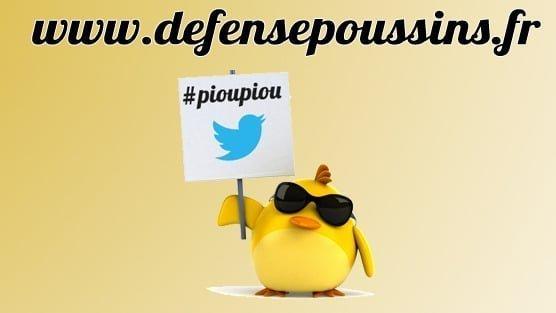 """Mobilisons nous pour l'entrepreneuriat (bis) avec """"#PiouPiou ! L'appel des poussins !"""""""