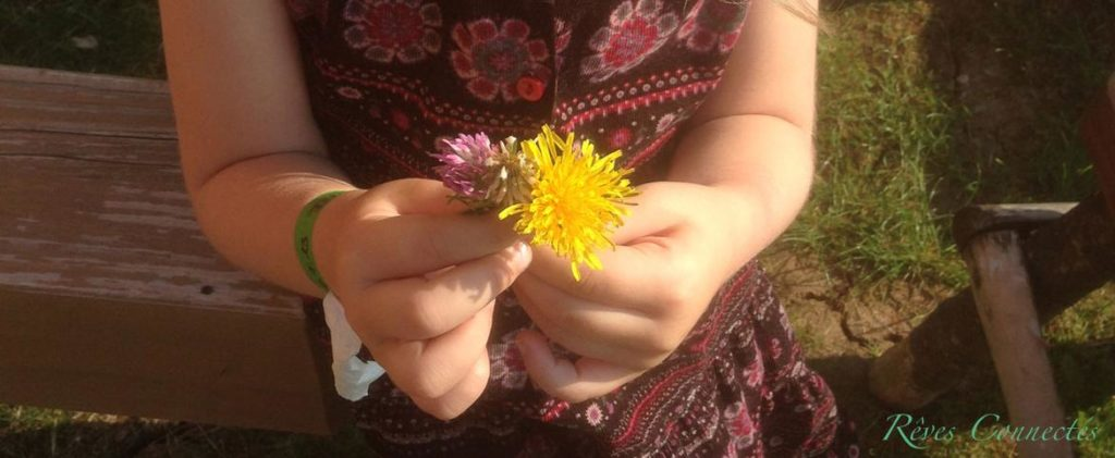 Alienor-Fleurs-Tripsdrill-Cadeau-8936