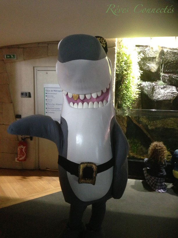 Aquarium-de-Paris-Maud-Fontenoy-Requins-0190