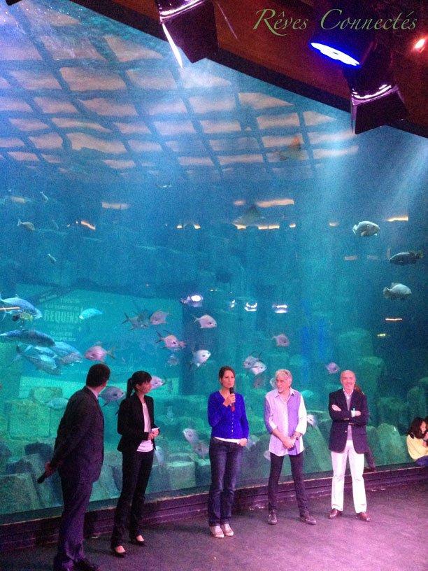Aquarium-de-Paris-Maud-Fontenoy-Requins-0208