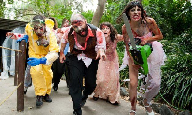 Halloween 2013 aussi à PortAventura avec notamment l'expérience inspirée de la saga de films d'horreur espagnols [REC].