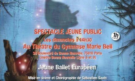 """Découvrez le """"Jeune Ballet Européen"""" avec """"Pinocchio le musical"""" et """"PUZZLE"""" au Théâtre Gymnase Marie Bell dès le 9 Mars 2014."""