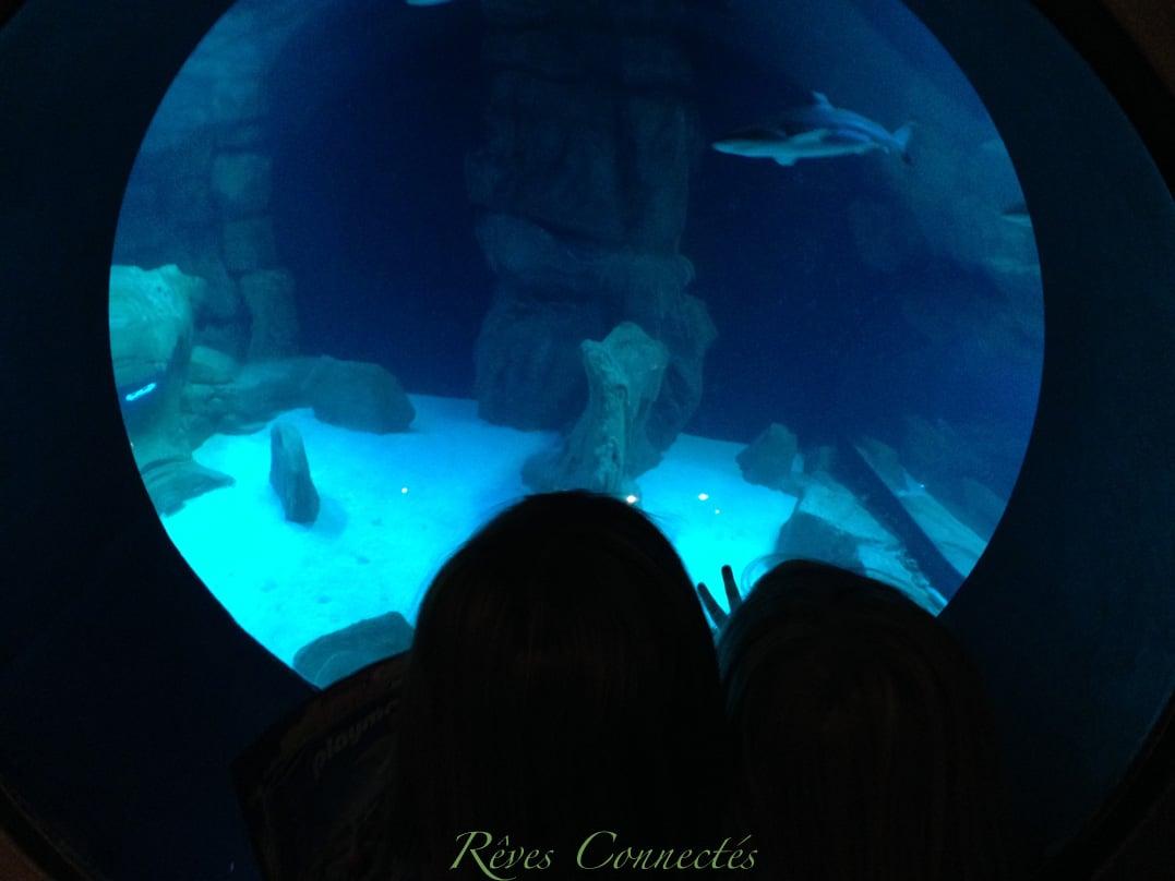 Aquarium-de-Paris-Playmobil-7776