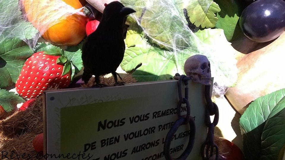 Parc-Asterix-20141018_079