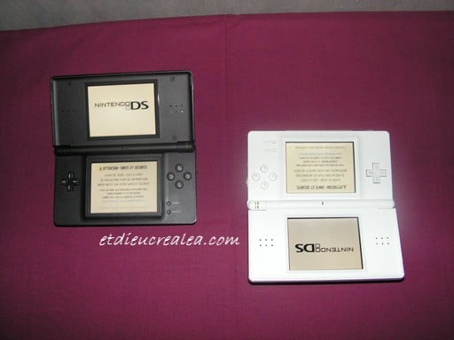 Les deux DS Lite