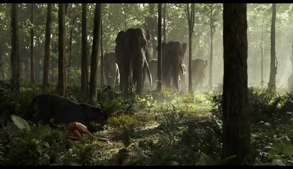 Le livre de la jungle Jungle book