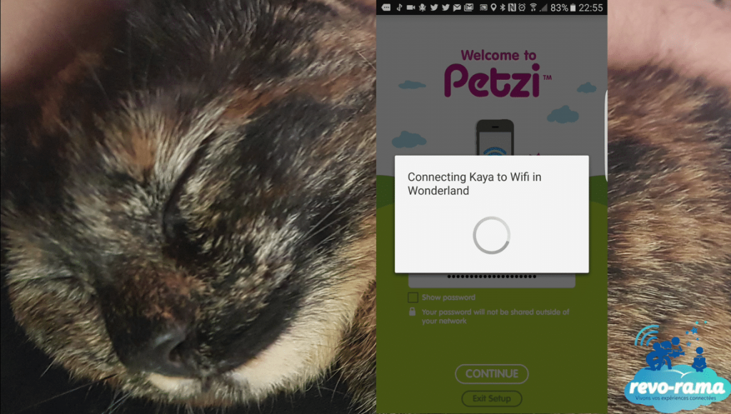Kaya-Petzi-Connecting-Wifi