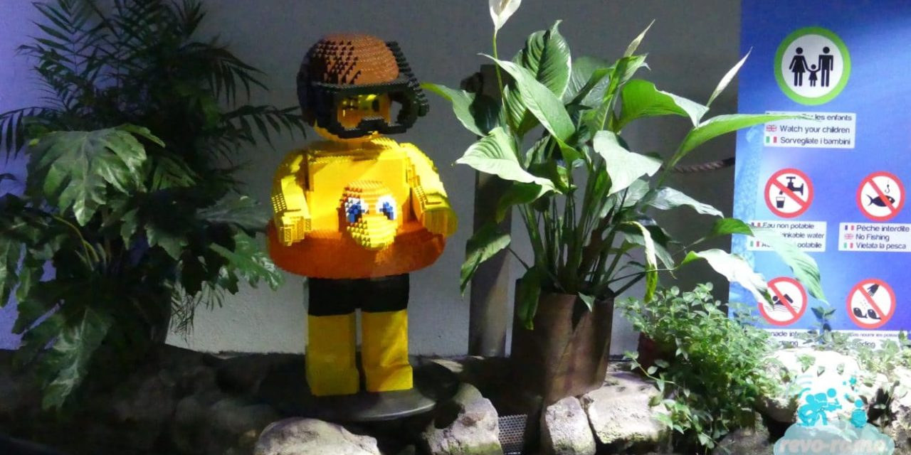 Les LEGO prennent le contrôle de l'Aquarium de Paris.