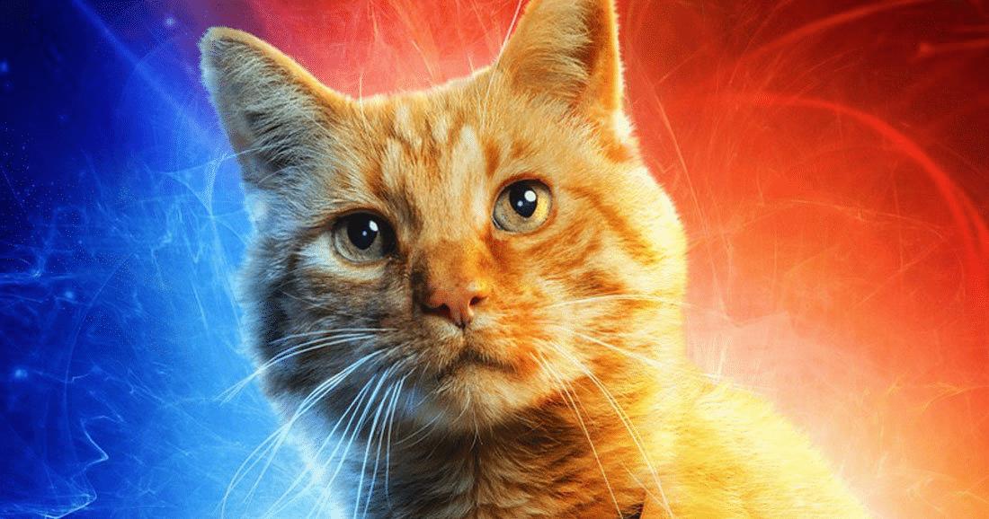 Captain Marvel : La solution de Nick Fury pour sauver l'univers du sombre dessein décidé par Thanos ? Notre avis sur le film le plus féministe de la saga des Avengers.