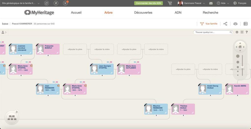 Extrait arbre généalogique MyHeritage